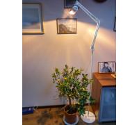 "Светильник для растений ""Рефлакс штатив 150 Вт"""