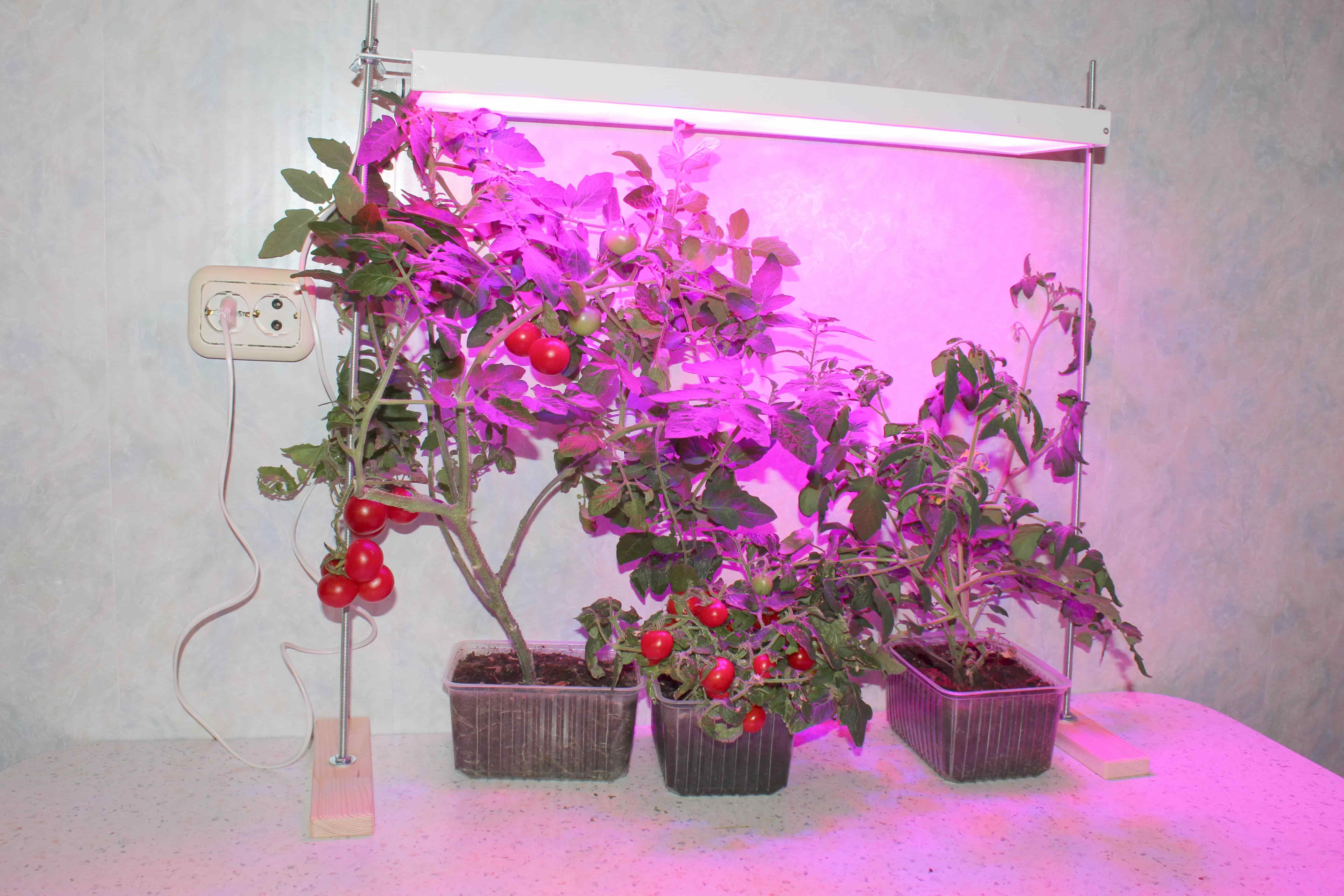 фитолампа для растений Солнцедар Д-20 Комфорт