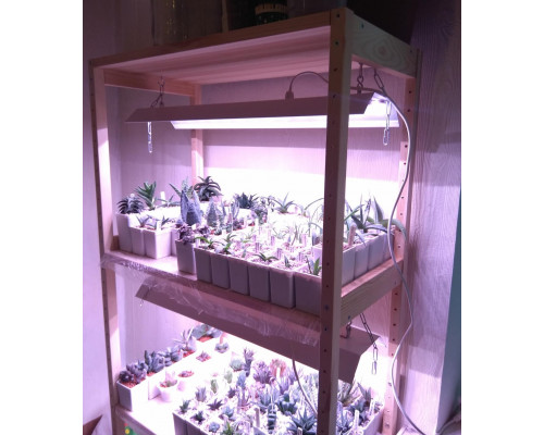 Стеллаж для растений с подсветкой.