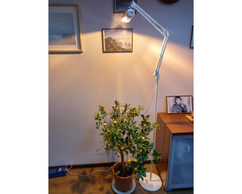 "Светильник для растений ""Рефлакс штатив"""