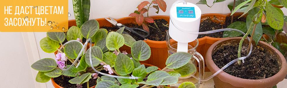 система полива для домашних растений
